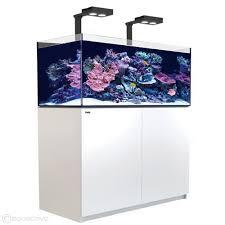 Aquarium Équipé Marin
